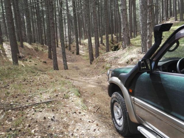 fast cars volcano active Adrenaline Rush etna forrest drive jeep 4 wheel drive sicily nebrodi maddonie off road fun