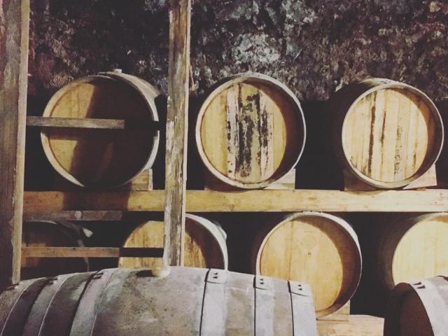 wine tasting drink red white bubbles degustazione sommelier travel taste pairing savour etna marsala menfi trapani DOC IGP DOP